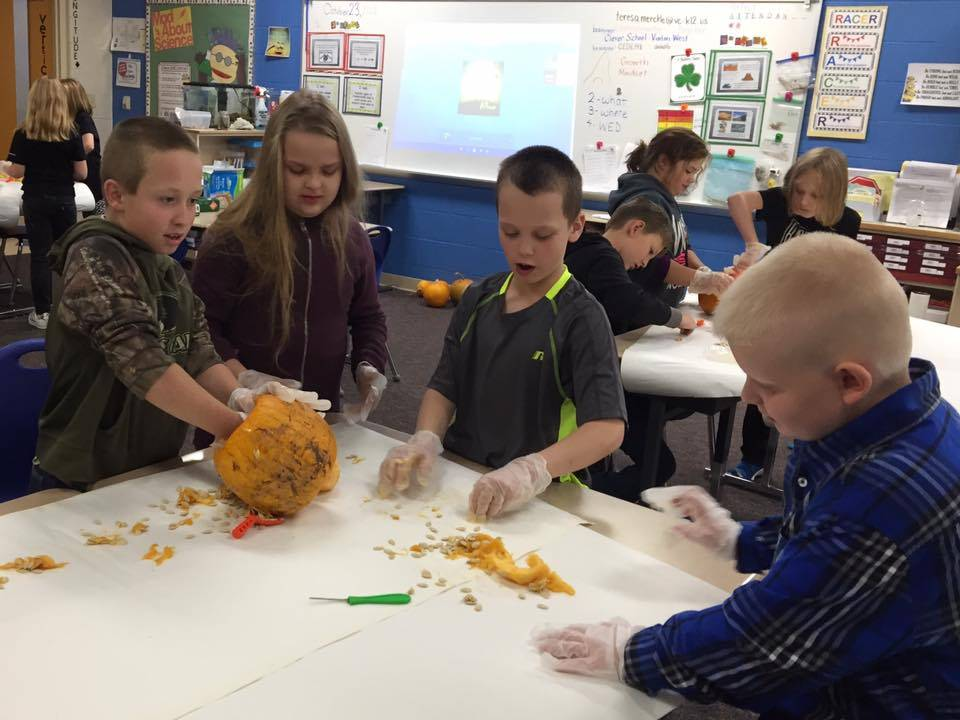 Mrs. Merckle's 4th Grade Pumpkin Lab
